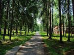 Клуб скандинавской ходьбы в пансионате «Воробьи» Калужской области