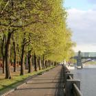 Клуб скандинавской ходьбы Нескучный сад